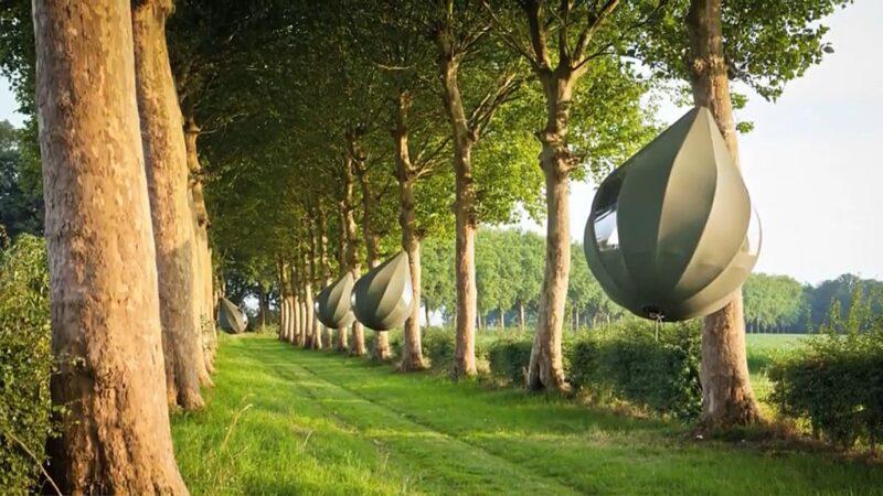 Da li biste noći proveli na drvetu za 70 eura?